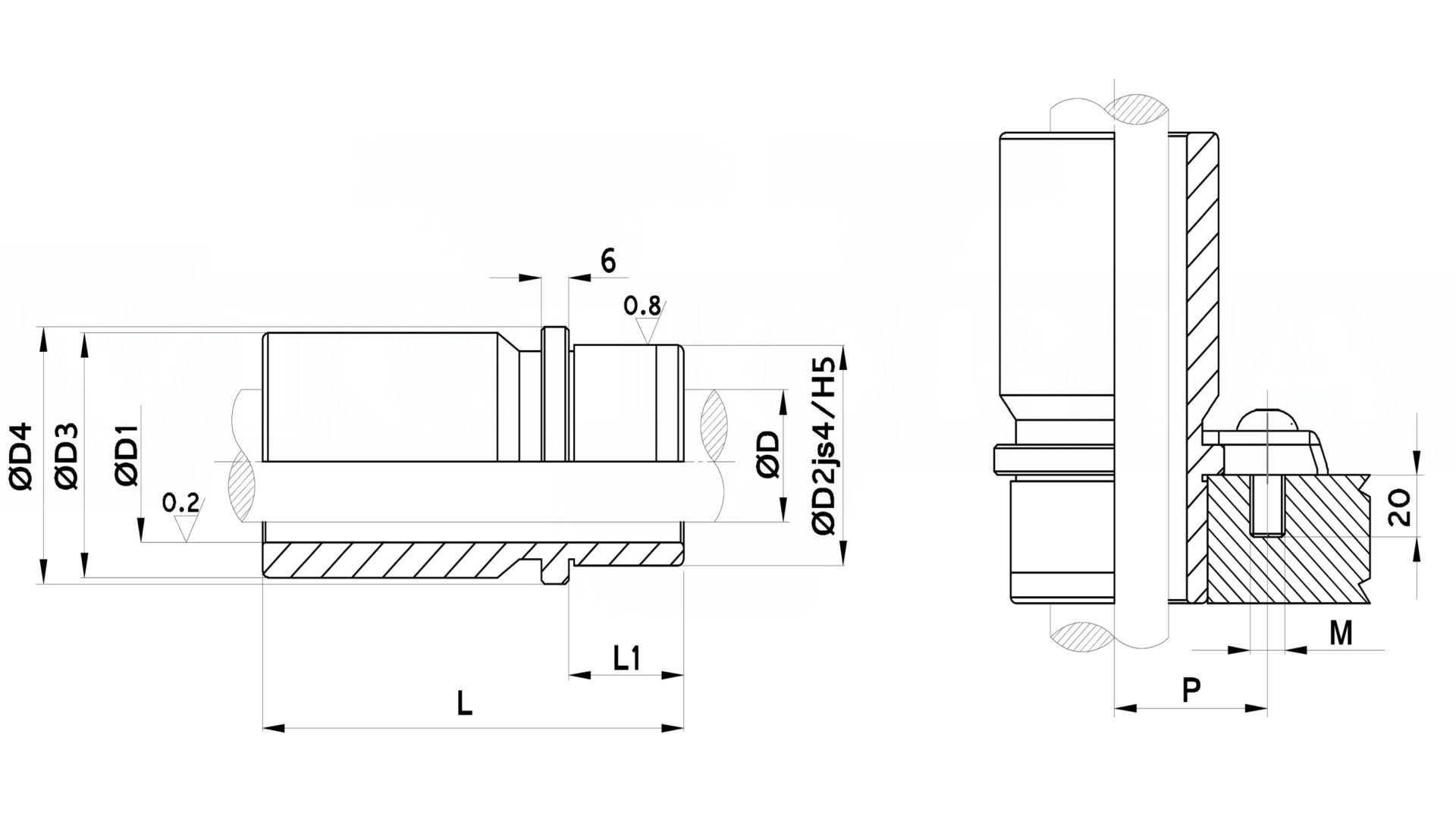 Immagini relative a bussole temprate